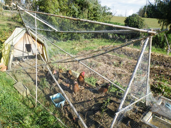 se préparer à survivre (changer son mode de vie son habitat) - Page 6 Nov-2010-052-22e89cd